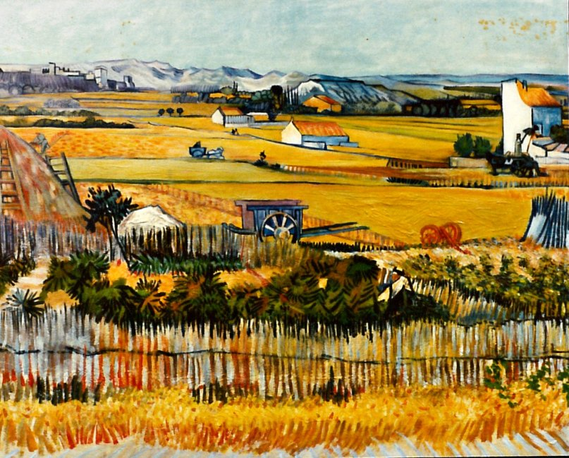 Copie d'arte - Van Gogh campi di grano